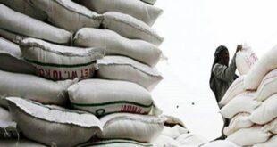 flour price in pakistan 2021 by Imran Khan